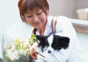 柴犬・豆柴専門店 ペットふれんど(備前桜山荘)