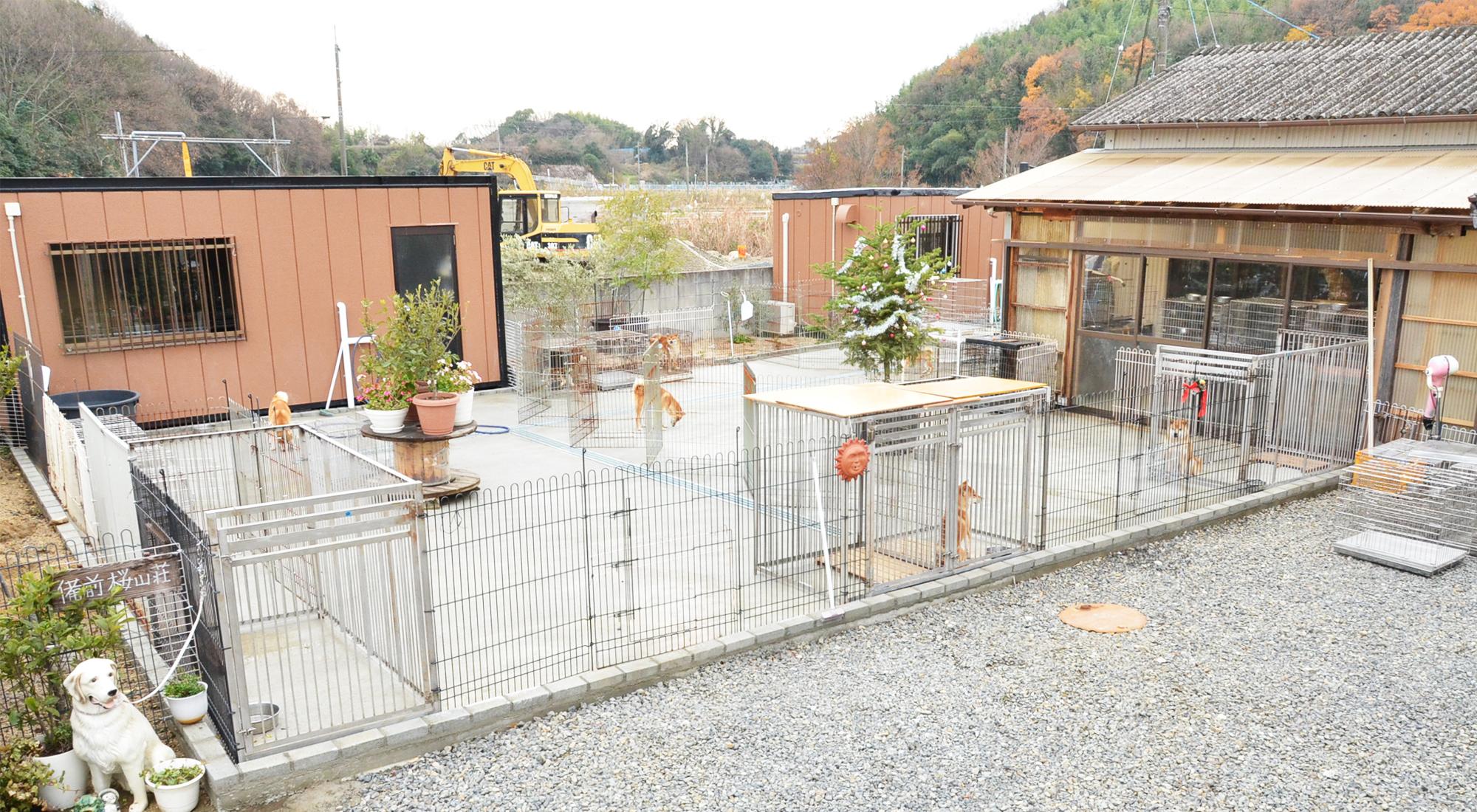 柴犬・豆柴専門店 ペットふれんど(備前桜山荘) 岡山市